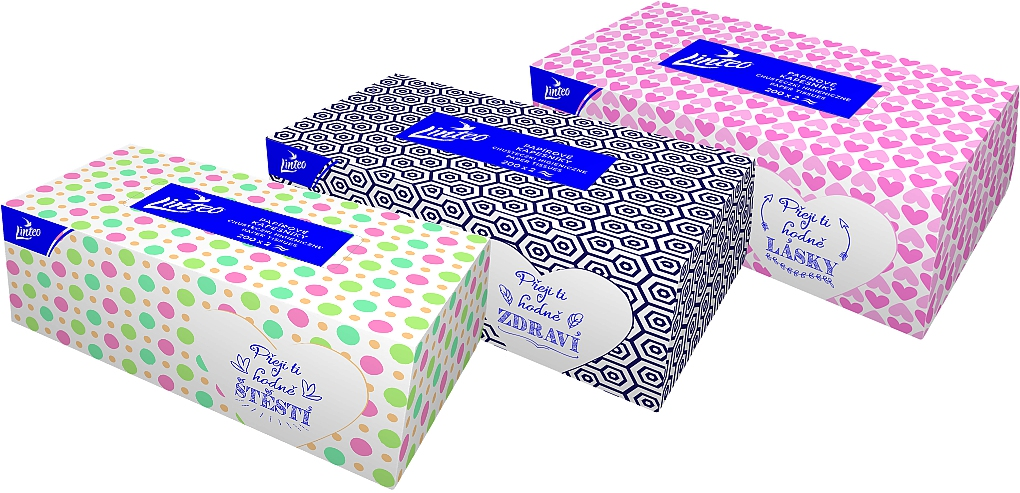 LINTEO kapesníčky v krabičce 2-V SOFT&CLEAN 200ks