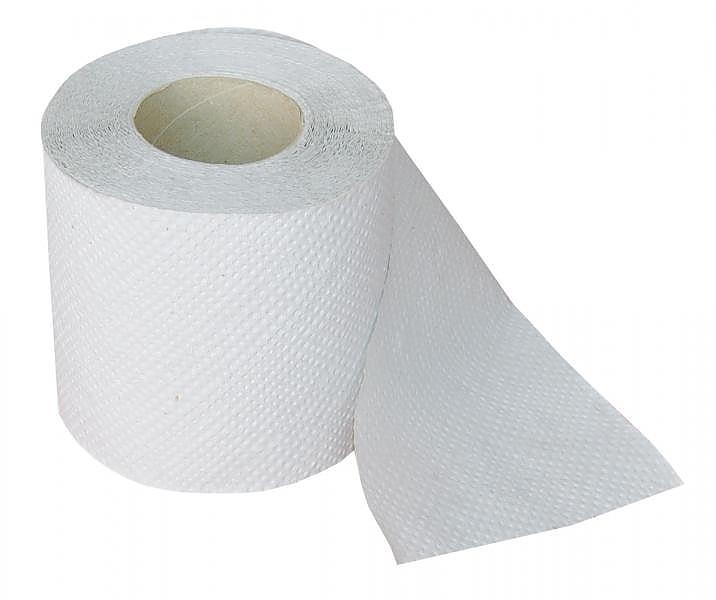 Toaletní papír 2-V bílý 250 útržků návin 25m